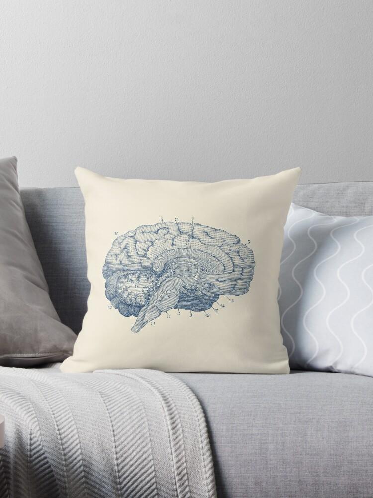 Cojines «Diagrama de la anatomía del cerebro humano» de VAposters ...