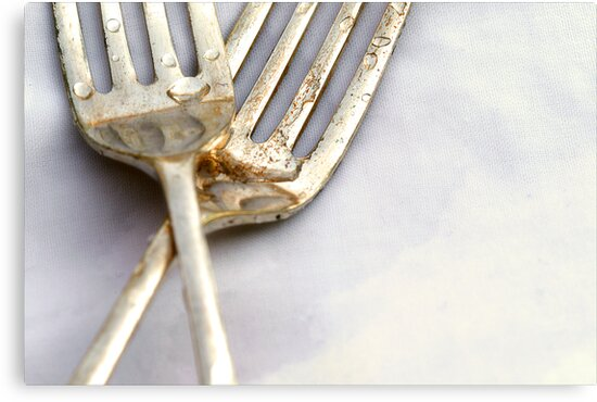 Forks by micklyn