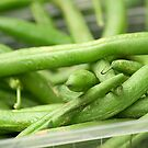 green bean by londongirl