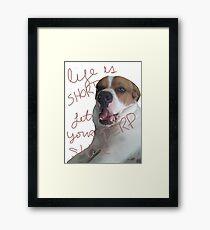 Derp Dog Framed Print