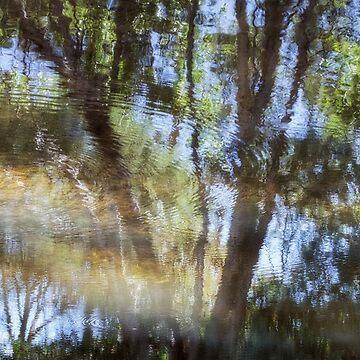 Dream River by LindaLees