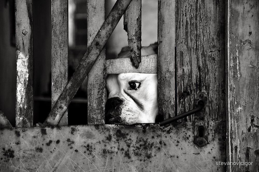Sadness by stevanovicigor