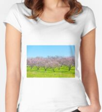 Pink Blooming Peach Trees at Spring Women's Fitted Scoop T-Shirt