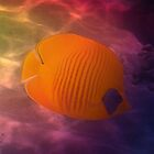 Gorgeous Butterflyfish Colorfully by hurmerinta