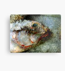 Eco-Interaction Metal Print