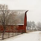 Winter on the Farm by believer9