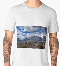 Arizona Landscape Men's Premium T-Shirt