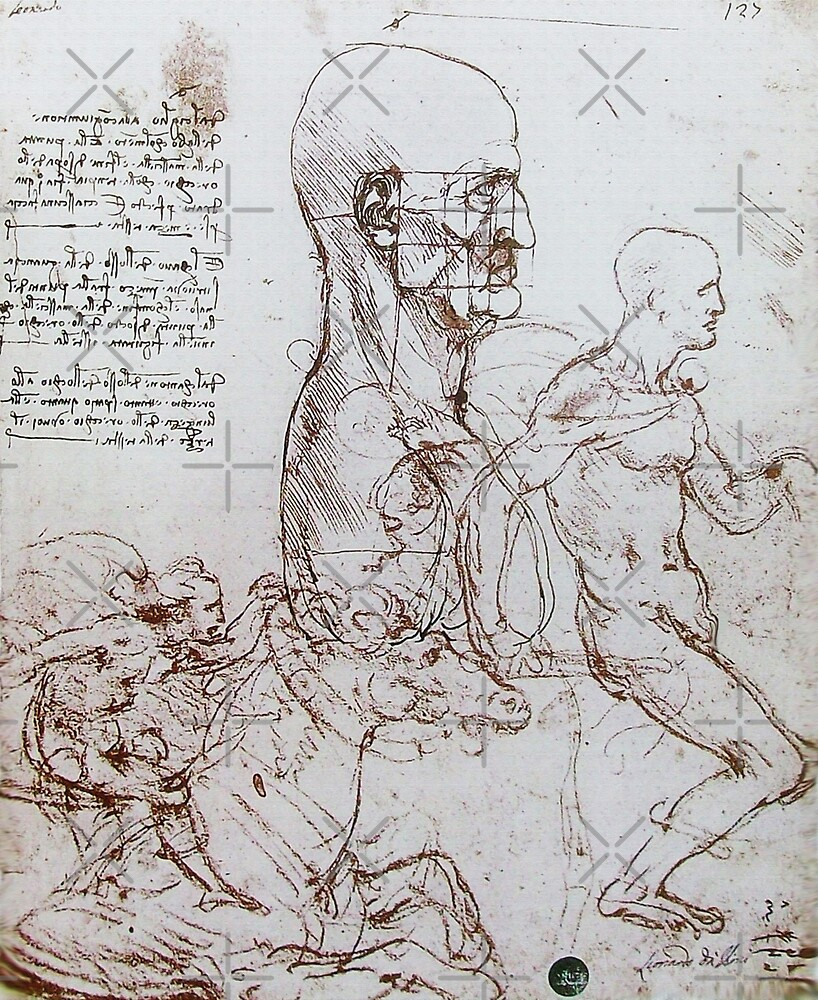 Leonardo da Vinci Anatomical Drawings ,Profile of a man and study of ...