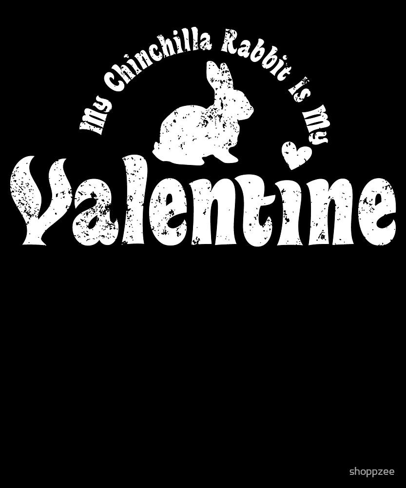 My Anti Valentine Pet Chinchilla Rabbit by shoppzee
