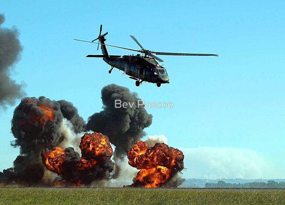 Australian Army Blackhawk Helicopter - Avalon, 2011 by Bev Pascoe
