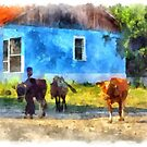 Malakastra shepherd brings his cows to pasture by Giuseppe Cocco