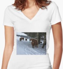 Scottish Highland Cattle Cows and Calves 1649 Women's Fitted V-Neck T-Shirt