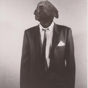 Gentleman dog by azria