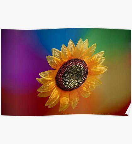 Sunflower-high Poster