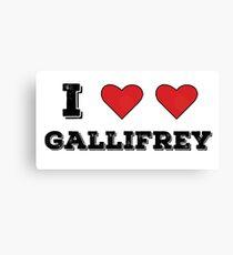 I love Gallifrey Canvas Print