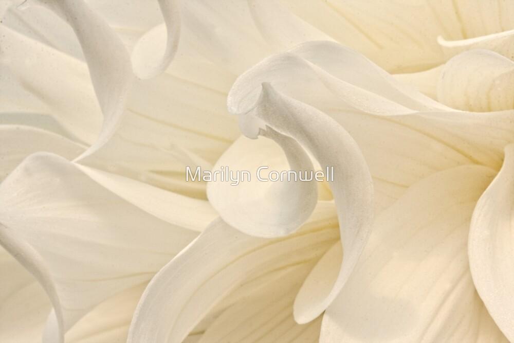 Swirling by Marilyn Cornwell