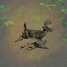 Deer by David Dehner
