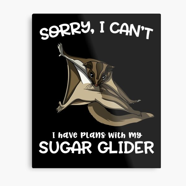 Sorry I Can't I Have Plans With My Sugar Glider Metal Print