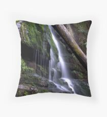 Lilydale waterfall Throw Pillow