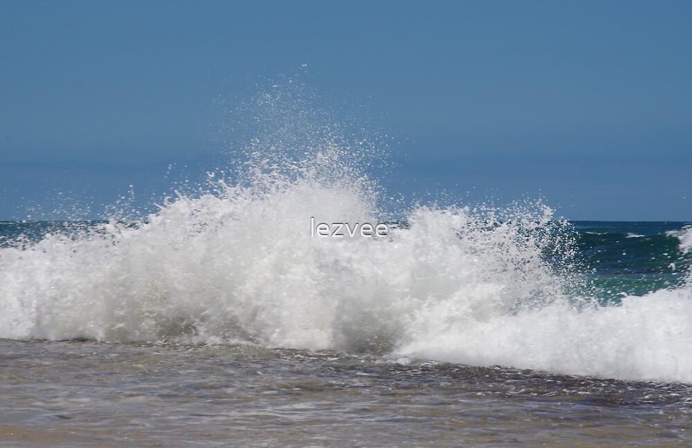 Incoming Breakers on Penguin Island by lezvee