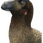 Linheraptor by JedTaylor
