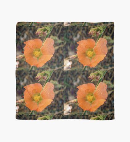 Orange flower Scarf