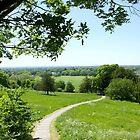Beautiful English countryside by Seller2018KF