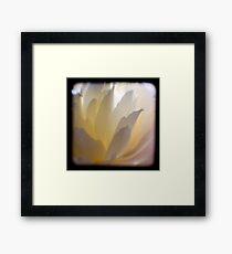 white petals ttv Framed Print