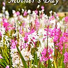 Happy Mother's Day by Coralie Plozza