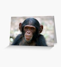 Little Chimp Greeting Card