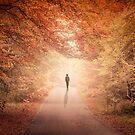 Season Of Hollow Soul by Evelina Kremsdorf