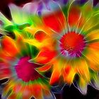 Fractal Flowers by Nadya Johnson