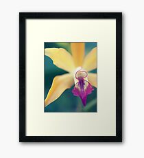 Earth laughs in flowers Framed Print