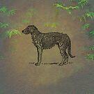 Deerhound by David Dehner