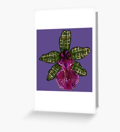 Pinque and Purrple Greeting Card