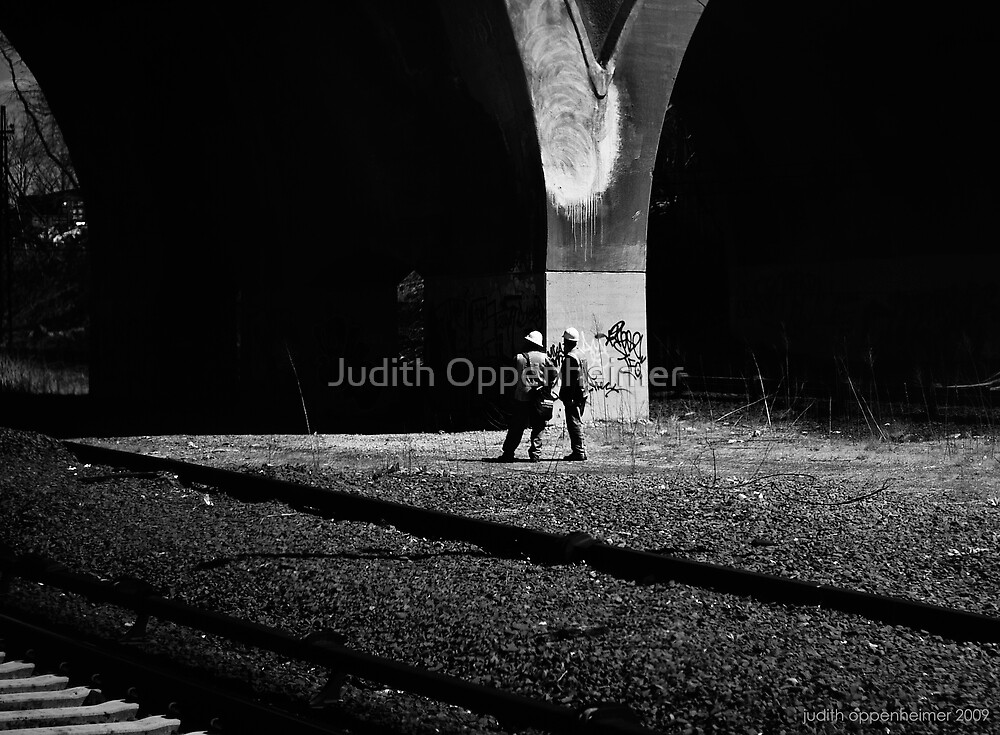 Y by Judith Oppenheimer