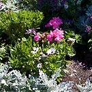 Tropical Garden by dmark3