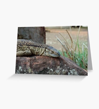 THE ROCK MONITOR Greeting Card