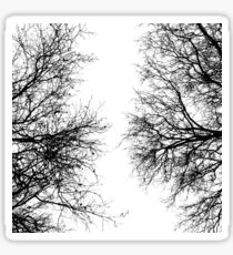 Black and White Trees Sticker