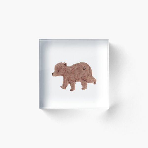 Cute Bear Illustration Acrylic Block