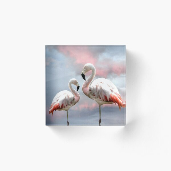Flamingo Sky sunset birds Acrylic Block