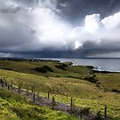 Storm is coming by MaShusik