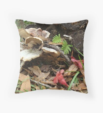 After the rain - life repeats Throw Pillow