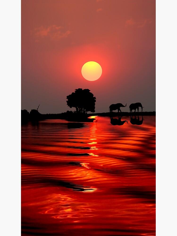 SUNSET WITH ELEPHANTS - BOTSWANA by farflung