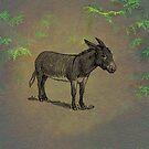 Donkey by David Dehner