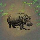 Hippopotamus by David Dehner