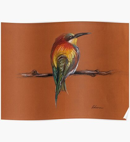 Wild - Original pastel/colored pencil drawing of a colorful wild bird Poster