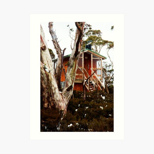 Waterfall Valley Hut, Overland Track, Tasmania Art Print