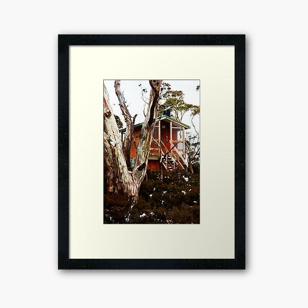 Waterfall Valley Hut, Overland Track, Tasmania Framed Art Print