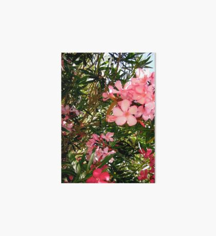 Pink and red oleanders Art Board